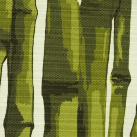 BAMBOO / GREEN