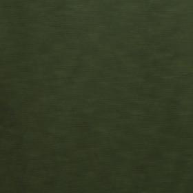 RAIDER / 44 OLIVE